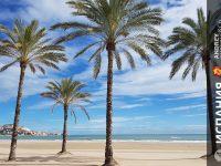 дом-в-испании-на-берегу-моря