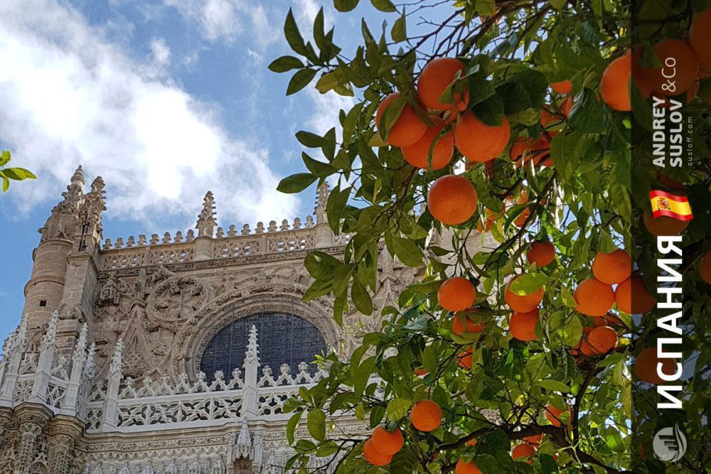kupit dom v ispanii nedorogo tseny Купить дом в Испании: безопасная сделка со скидкой на объект