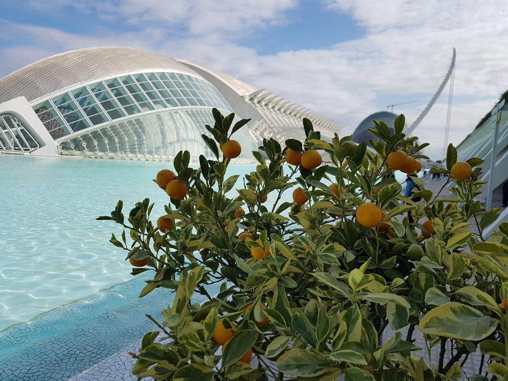 luchshij gorod v mire ispanskaya valensiya Как переехать в Испанию без денег – реалистичные варианты