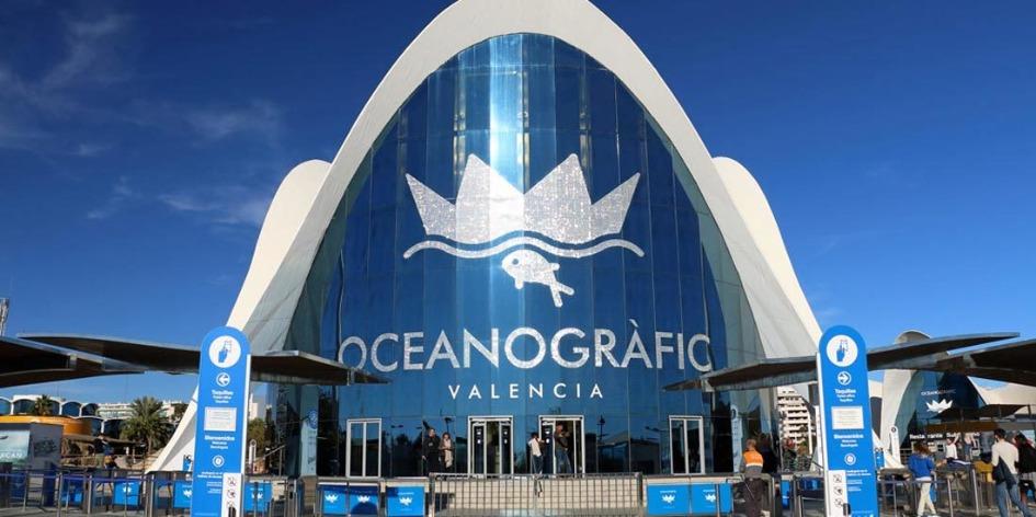 oceanografic Достопримечательности Валенсии: что посетить и посмотреть?
